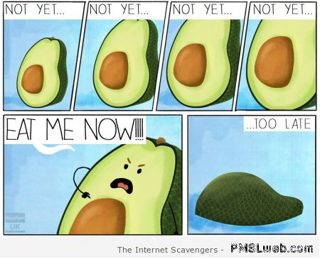 10-funny-avocado-cartoon