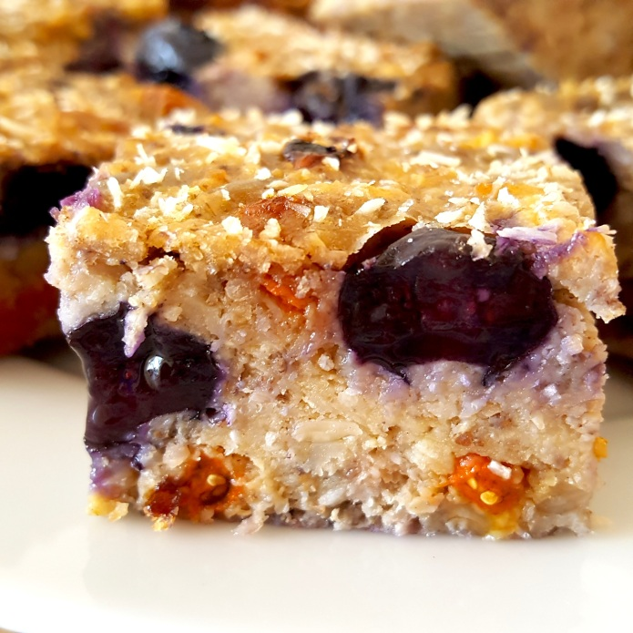 Blueberry bars 15